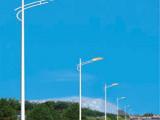 室外照明灯具 单臂道路路灯单臂路灯 质优价廉不锈钢草坪灯庭院灯