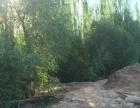吐鲁番市胜金乡出售一片宝地