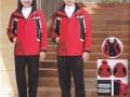 秋冬新款幼儿园园服冬装棉衣 儿童冲锋衣厂家定制定做