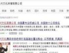 上海昌兴文化传媒有限公司-古董艺术品抵押贷款