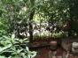 柳北康城 3室2厅2卫 148㎡一楼带30平米花园