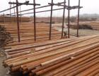 巨野出租钢管架管