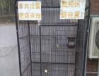 99成新猫用品价格面议