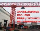北京哪里有卖电动葫芦起重机的