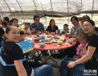 组团摘草莓-镇海湾塘陈氏草莓园
