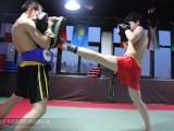 上地散打班-上地拳击班-上地综合格斗培训班