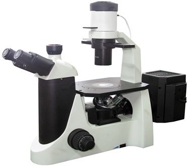 澳浦荧光UY200i正置荧光显微镜