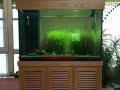 批发零售各种款式实木成套鱼缸,草缸