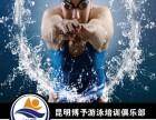 昆明专业成人游泳培训,包教会