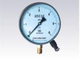 供应上海仪川仪表厂YTZ--150  远