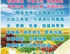 谷金源五谷现磨豆浆只需780元就可开业