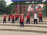 鄭州市飛龍武術館 空翻特技 /成人散打/ 少兒武術培訓基地