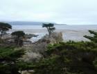 加州一号公路美国最美的沿海公路