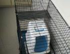 出售猫笼子和猫厕所沙盆