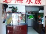 南京江宁品牌鱼缸 江宁碧海水族