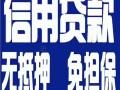深圳宝安龙岗罗湖无抵押小额信用贷款车房贷款
