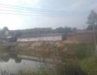 转让肇庆四会200亩养殖农场