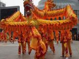 深圳专业年会舞龙舞狮哪家强详情请来电沟通