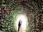 【东营北京影楼】客片欣赏张,吕 的幸福婚纱照