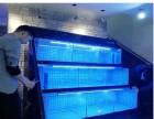 广州海鲜池定做-大型鱼缸定做-全自动温控海鲜池-洋清水族