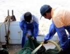 象山石浦游轮出海捕鱼游是富有渔家特色的休闲旅游项目