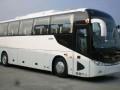 漳州19~55座豪华巴士周边二日游包车