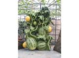 精雕细琢的仿真蔬菜水果雕塑,蔬菜水果雕塑