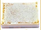 蜂巢蜜 新巢蜜 封盖蜜 天然蜂巢蜜500