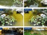 安徽芜湖鱼池水质处理之酸碱度控制