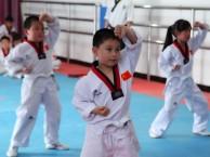 大兴专业少儿跆拳道培训班 基础班 4.5岁以上