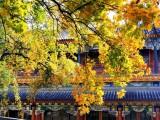 北京會議攝像拍攝北京活動攝影攝像拍攝 宣傳片制作