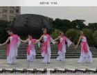 ZY舞蹈培训中心钢管舞爵士舞