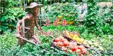潍坊农耕人物雕塑厂家推荐 蔬菜雕塑供应