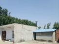 钢结构厂房出1300平方米出租
