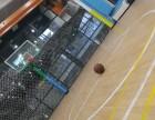 朝阳化工路 杰慠篮球馆