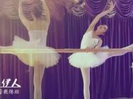专业爵士、芭蕾形体、古典舞、拉丁、肚皮舞教练培训