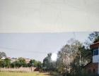 安仁大草原 其他 660平米