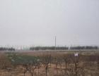 山东省济南市商河县650亩水浇地出租