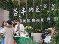 广州展会模特走秀,礼仪庆典,舞蹈乐队,平面拍摄