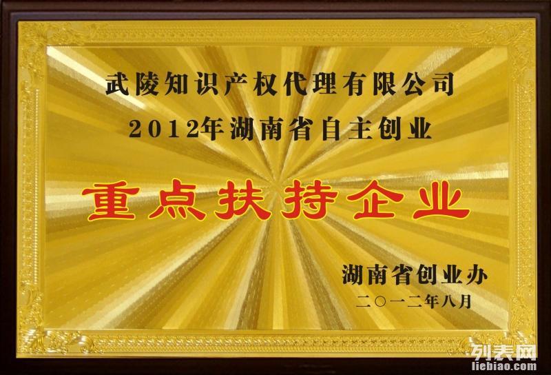 公司注册首选张家界武陵山知识产权代理公司1