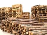 武汉工地木方回收/武汉长短木方高价回收