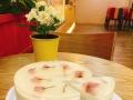 绵绵冰+甜品+水果捞+贡茶加盟,赠送设备 免费培训