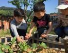四川成都学校生态农场设计施工-学校屋顶菜园设备批发