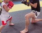 江汉路 少儿武术 塑性减脂 自由搏击 女子防身术