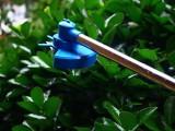 打尖机葡萄打尖机电动打尖机果树打尖机植物打尖机