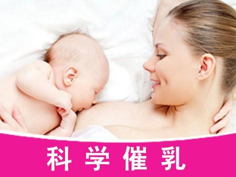 深圳催乳师24小时到家服务 产后少奶无奶堵奶找贝恩专业催乳师