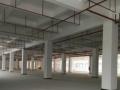 福永兴围全新厂房楼上1050平米出租临近广深高速