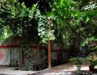 吐鲁番市阿娜尔古丽庄园(葡萄沟青年旅社