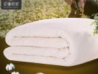 【厂家直销 】正品 新款千层有网棉胎 新疆长绒棉胎 棉絮 价优