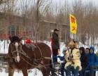 哈尔滨冰雪梦幻乐园